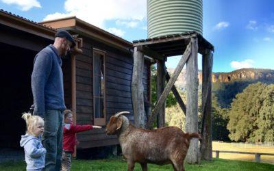 Farmstays near Sydney, Australia